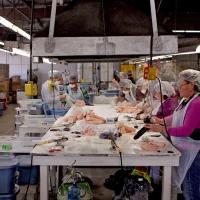 Un paseo dentro de la fábrica de juguetes sexuales más grande de estados unidos
