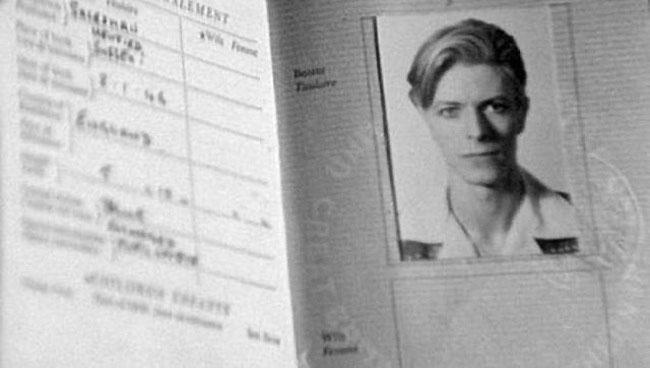 passportdavid
