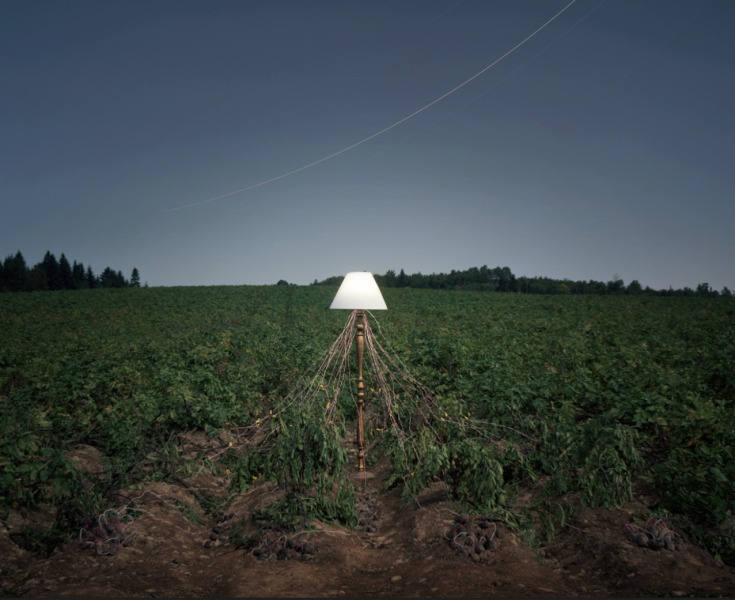 cgarland-lamp-2